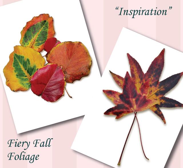 Foliage-A
